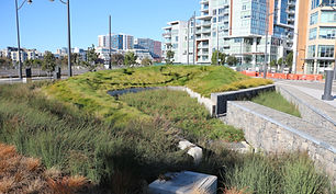 Mission Bay Watershed 1.JPG