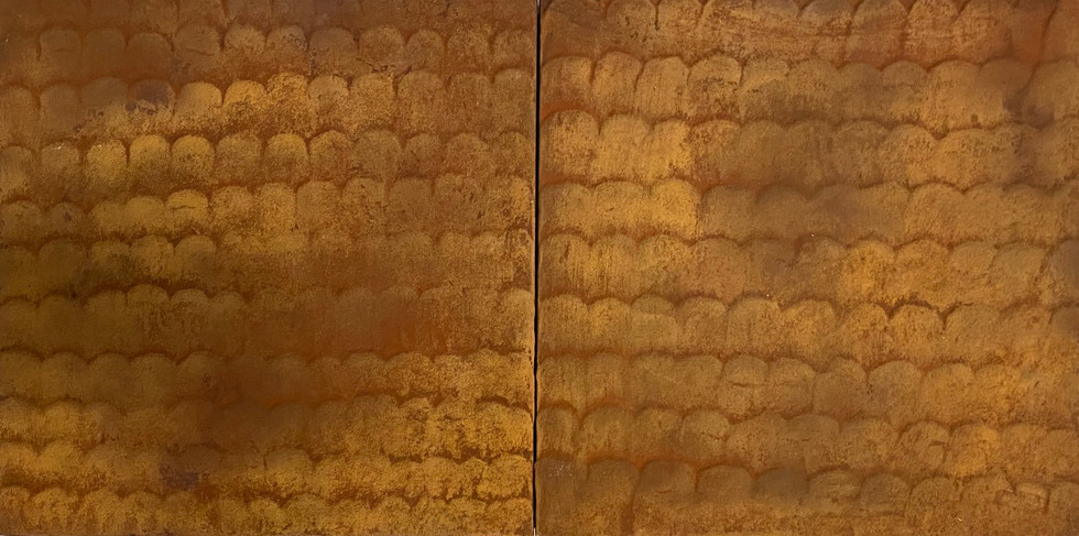 Rust Fish Scale Diptych