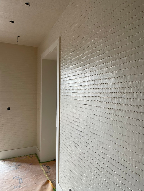 Plaster Fish Scale wall