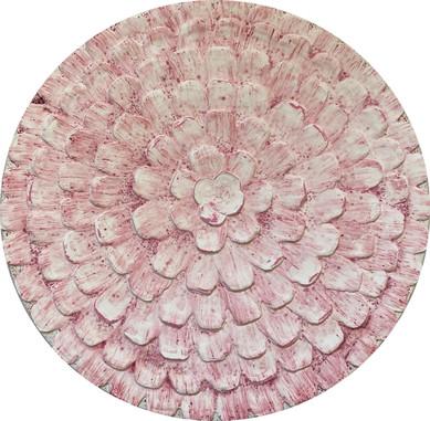White Pink Dahlia