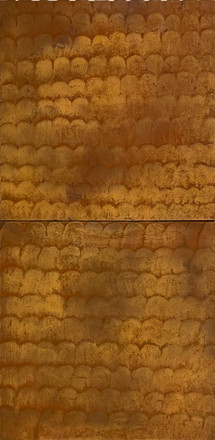 Rust Fish Scales Diptych