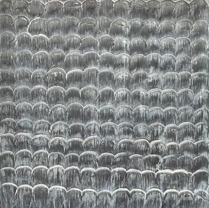 Gray Fish Scale
