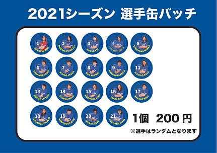 アートボード 2-100.jpg