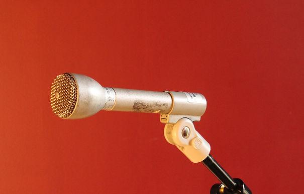 Vintage Electro Voice 635A (qty.  1)