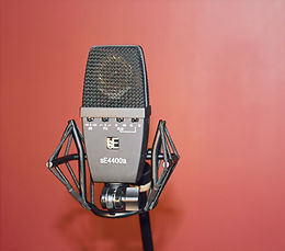 Salt Lake City, Utah Recording Studio | Utah podcast studio | SE Electronics SE4400a