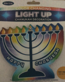 Light Up Colour Changing Decoration