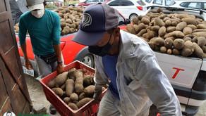 Governo da Paraíba compra da agricultura familiar e distribui mais de 480 toneladas de alimentos