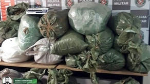 Polícia Militar apreende mais de 200 quilos de drogas em João Pessoa