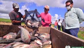 Governo da Paraíba adquire pescados para distribuir com 30 mil famílias de 74 cidades