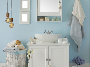 How To Choose The Right Paint for Bathrooms