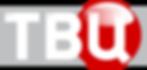 1200px-TV_Tsentr_2013_Logo.svg.png