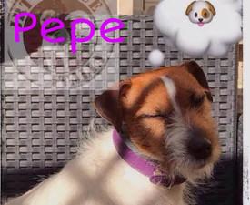 PicsArt_02-28-04.12.46.jpg