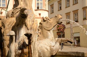 batch_Czech_56.JPG