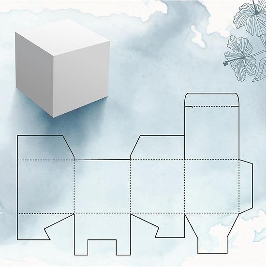 scatola anemone paper factory-01.jpg