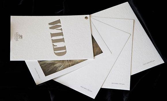 CORDENONS Wild White Natural - 450gr - 70x100