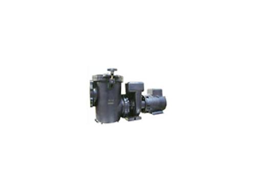 Waterco Hydro 5000 Cast Iron Pump