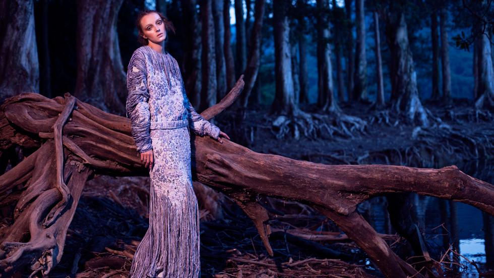 Dark Forest Fairytale