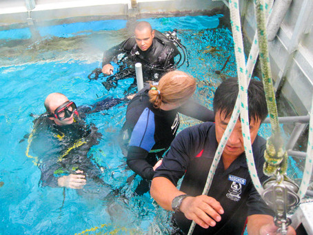 <澳洲大堡礁—色彩艷麗的海底世界>The Great Barrier Reef - Colorful Sea World