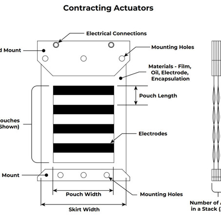 Customization Options for HASEL Actuators