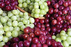 red-and-green-grapes.jpg