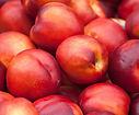 Nectarines-.jpg