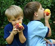 Vossler Boys - Peaches 09 034.jpg