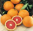 Cara-Cara-Orange.jpg