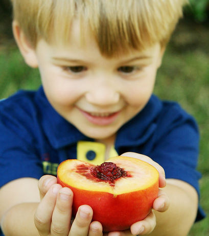 Vossler Boys - Peaches 09-2 021.jpg