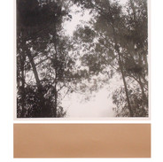 """Take good care"" Kirsti Aasheim/ Screenprinting/ 51x40 cm"