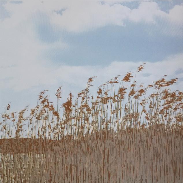 """Bright Sunny Day"" Kirsti Aasheim/ Screenprinting/ 38x38 cm"
