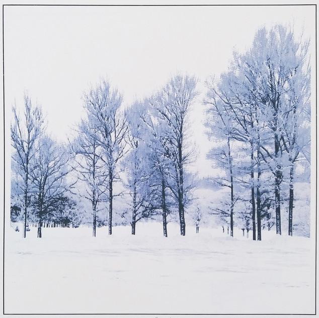 """""""Winter Beauty"""" Kirsti Aasheim/ Screenprinting/ 39,5x39,5cm"""