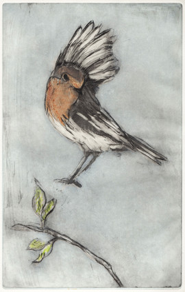 """The Landing"" Kirsti Aasheim/ etching/ 17,5x28 cm"
