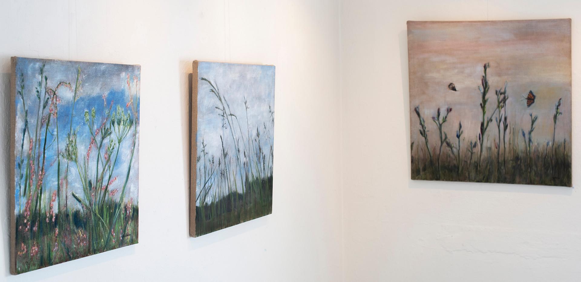 Kirsti Aasheim/ Paintings/ Drøbak Kunstforening