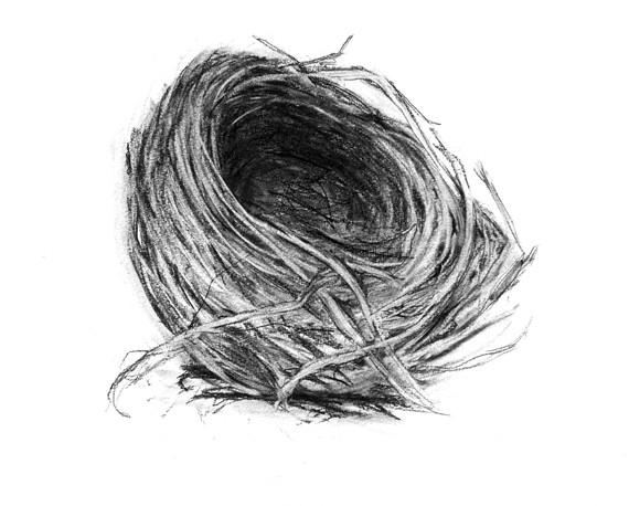 """Empty Nest 2"" Kirsti Aasheim/ Charcoal on paper 32x41 cm"