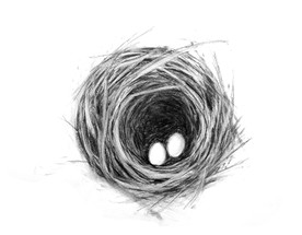 """""""Nest with two eggs"""" Kirsti Aasheim/ Charcoal on paper 32x41 cm"""