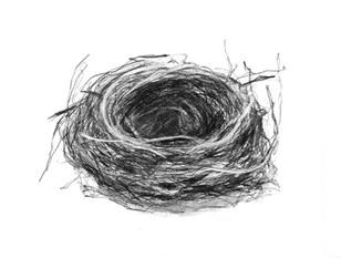 """Empty Nest 1"" Kirsti Aasheim/ Charcoal on paper 32x41 cm"
