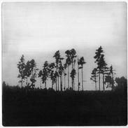 """We Are Still Here"" (black variant) Kirsti Aasheim/ etching/ 18x18cm"