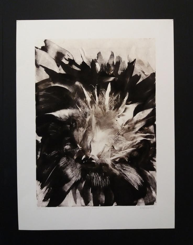 Galleri Schaffersgate 5/ artwork by Anne Kari Ødegård