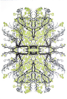 """Metamorphose"" (lime variant) Kirsti Aasheim/ Screenprinting/ 56x38 cm"