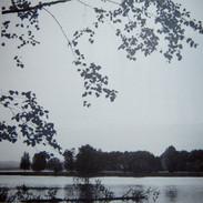 """""""Silent """" Kirsti Aasheim/ Screenprinting/ 28,5x28,5cm"""