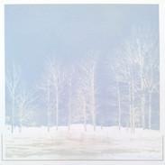 """ Snow White"" Kirsti Aasheim/ Screenprinting/ 39x38 cm"