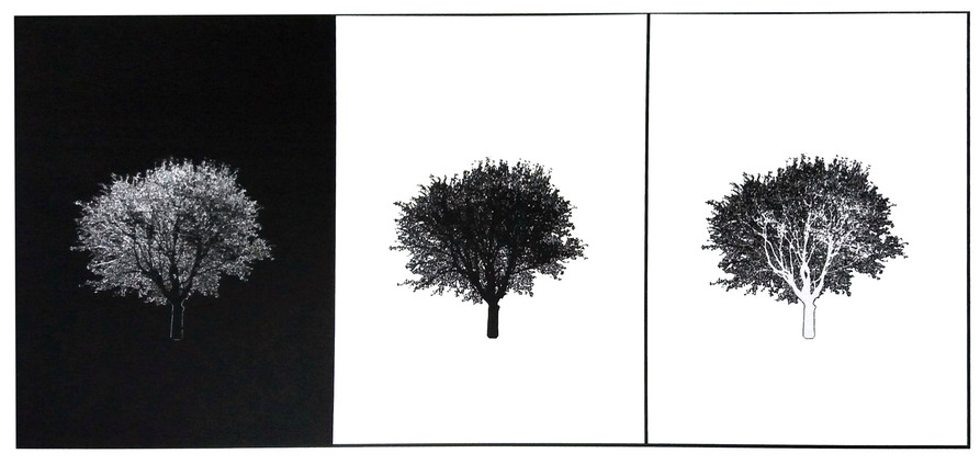 """Silent All These Years"" Kirsti Aasheim/ Screenprinting/ 20x44 cm"