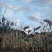 """""""Straw On A Hill"""" Kirsti Aasheim/ painting/ 70x70 cm"""