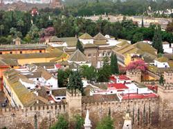 Seville DMC