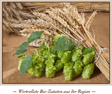 Bio Bier aus Hopfen und Malz