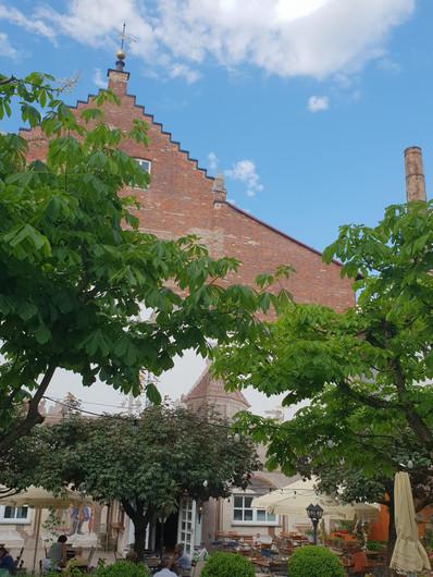 Kastanienbäume.jpg