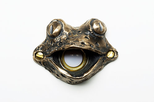 Fiona Frog