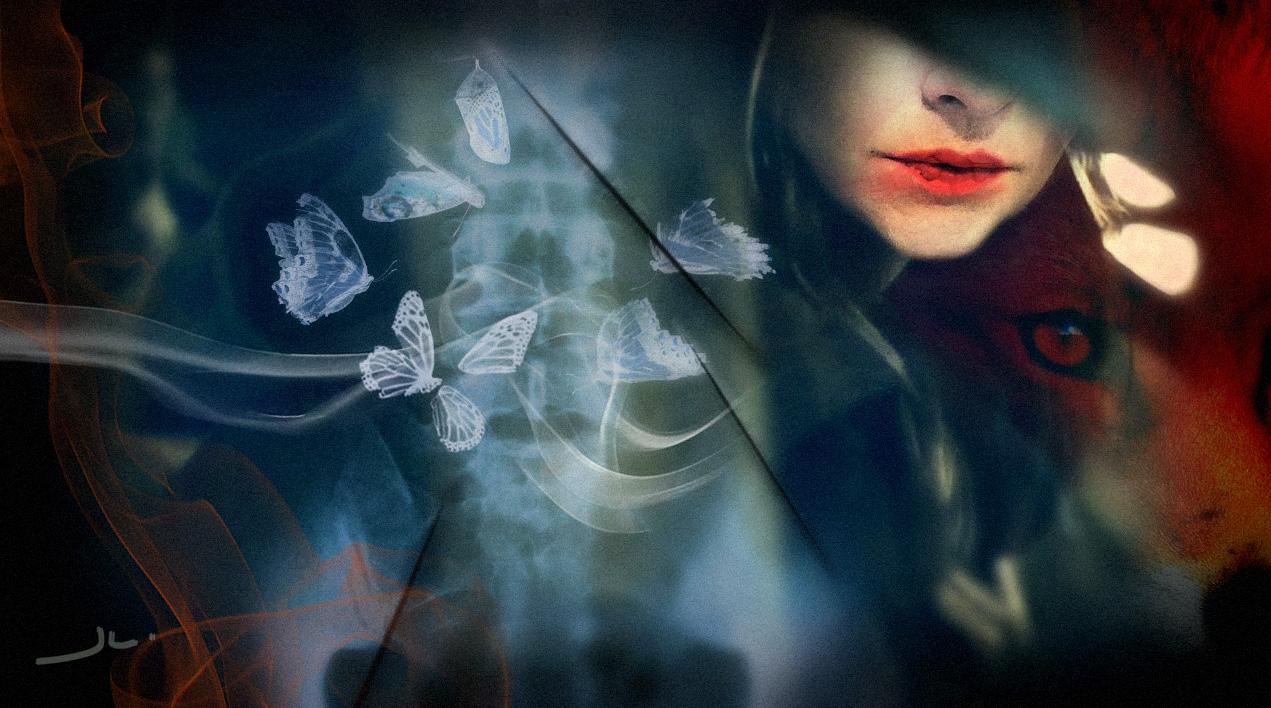 newserie-mixedart-butterfly-juhleidl.jpg