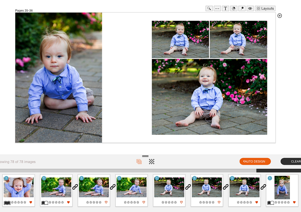 Fundy Designer screenshot example album spread