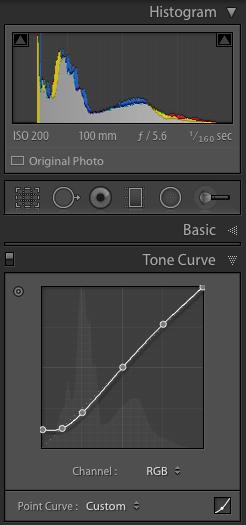 histogram and tone curve